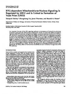 RTG-dependent Mitochondria-to-Nucleus Signaling Is Regulated by ...