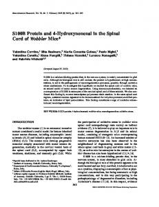 S100B Protein and 4-Hydroxynonenal in the Spinal ... - Springer Link