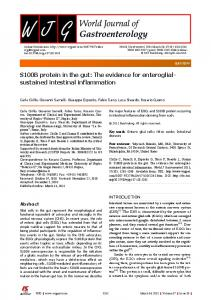 S100B protein in the gut: The evidence for enteroglial ...