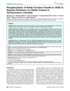 Saccharomyces cerevisiae - PLOS
