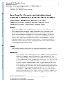 Sacral Spinal Cord Transection and Isolated Sacral ...