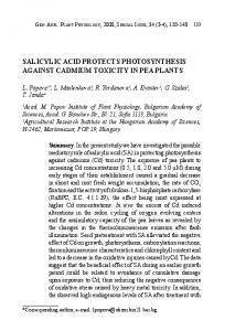 salicylic acid protects photosynthesis against