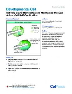 Salivary Gland Homeostasis Is Maintained through Acinar ... - Cell Press