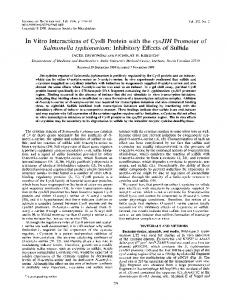 Salmonella typhimurium: Inhibitory Effects of ... - Journal of Bacteriology