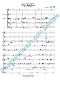 Sample score (PDF) - Peakview Music