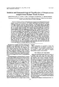 sanguis from Human Tooth Surfaces - Journal of Clinical Microbiology