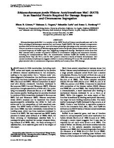 Schizosaccharomyces pombe Histone ... - Semantic Scholar