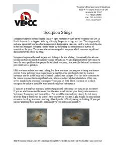 Scorpion Stings - Veterinary Emergency and Critical Care