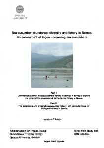 Sea cucumber abundance, diversity and fishery in ...