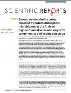 Secondary metabolite genes encoded by potato