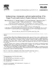 Sedimentology, stratigraphy, and micropalaeontology of the Upper ...