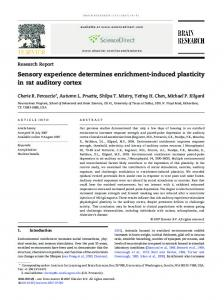 Sensory experience determines enrichment-induced plasticity in rat ...
