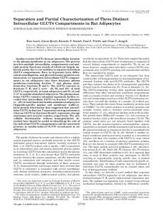 Separation and Partial Characterization of Three Distinct Intracellular ...