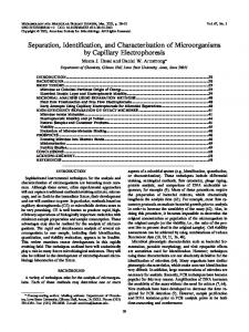 Separation, Identification, and Characterization of Microorganisms by ...