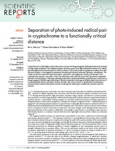 Separation of photo-induced radical pair in ... - Semantic Scholar