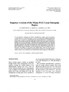 Sequence Analysis of the Mouse RAG Locus