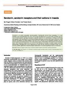 Serotonin, serotonin receptors and their actions in insects - CiteSeerX