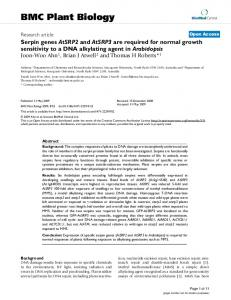 Serpin genes AtSRP2 and AtSRP3 are required for normal growth ...