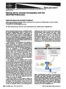 Setting sail for glucose homeostasis with the ... - Semantic Scholar