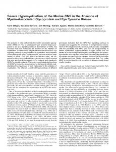 Severe Hypomyelination of the Murine CNS in the ... - Semantic Scholar