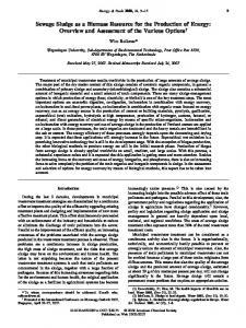 Sewage Sludge as a Biomass Resource for the Production of ...