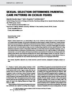 sexual selection determines parental care patterns in cichlid fishes