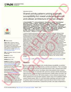Shared activity patterns arising at genetic