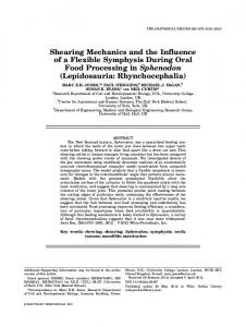 Shearing Mechanics and the Influence of a ... - Wiley Online Library