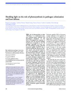 Shedding light on the role of photosynthesis in pathogen colonization ...