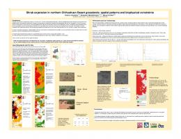 Shrub expansion in northern Chihuahuan Desert ...