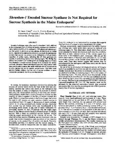 Shrunken-i Encoded Sucrose Synthase Is Not Required for ... - NCBI