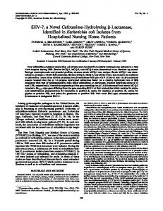 SHV-7, a Novel Cefotaxime-Hydrolyzing - Antimicrobial Agents and ...