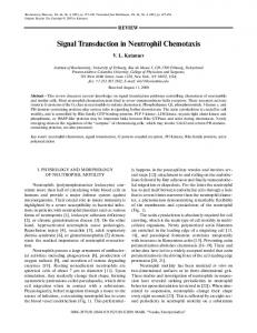 Signal Transduction in Neutrophil Chemotaxis - Springer Link
