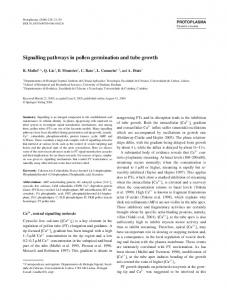 Signalling pathways in pollen germination and tube growth - Core