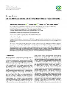 Silicon Mechanisms to Ameliorate Heavy Metal Stress in Plants