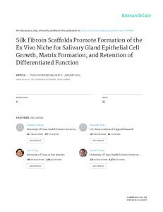 Silk Fibroin Scaffolds Promote Formation of the Ex ...
