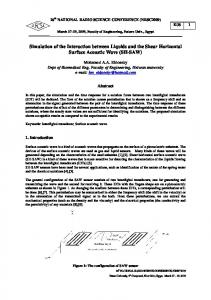 Simulation of the Interaction between Liquids and the
