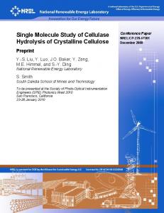Single Molecule Study of Cellulase Hydrolysis of Crystalline Cellulose