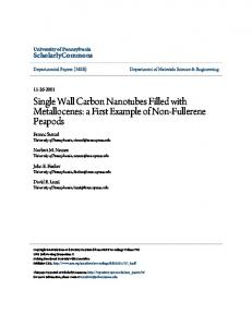Single Wall Carbon Nanotubes Filled with ...