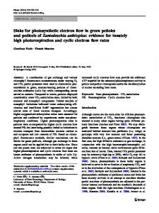 Sinks for photosynthetic electron flow in green petioles and pedicels of ...