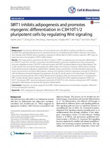 SIRT1 inhibits adipogenesis and promotes myogenic differentiation in ...