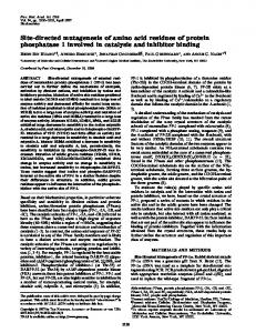Site-directed mutagenesis of amino acid residues of protein ...