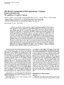 Site directed mutagenesis of DNA polymerase I ... - Wiley Online Library