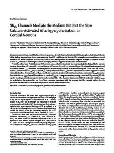 SKCa Channels Mediate the Medium But Not the Slow Calcium ...
