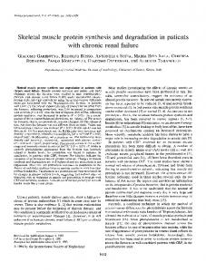 Skeletal muscle protein synthesis and ... - Kidney International