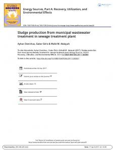 Sludge production from municipal wastewater treatment in sewage ...