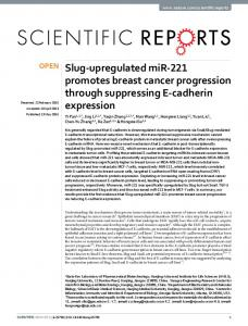 Slug-upregulated miR-221 promotes breast cancer ... - Semantic Scholar