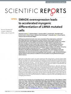 SMAD6 overexpression leads to accelerated myogenic differentiation