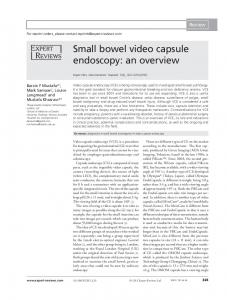 Small bowel video capsule endoscopy: an overview