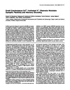 Small Conductance Ca2+ -Activated K Channels ... - Semantic Scholar